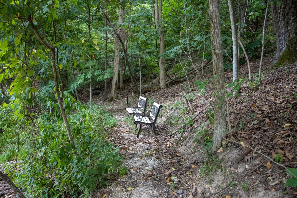 hiking trail at OYC